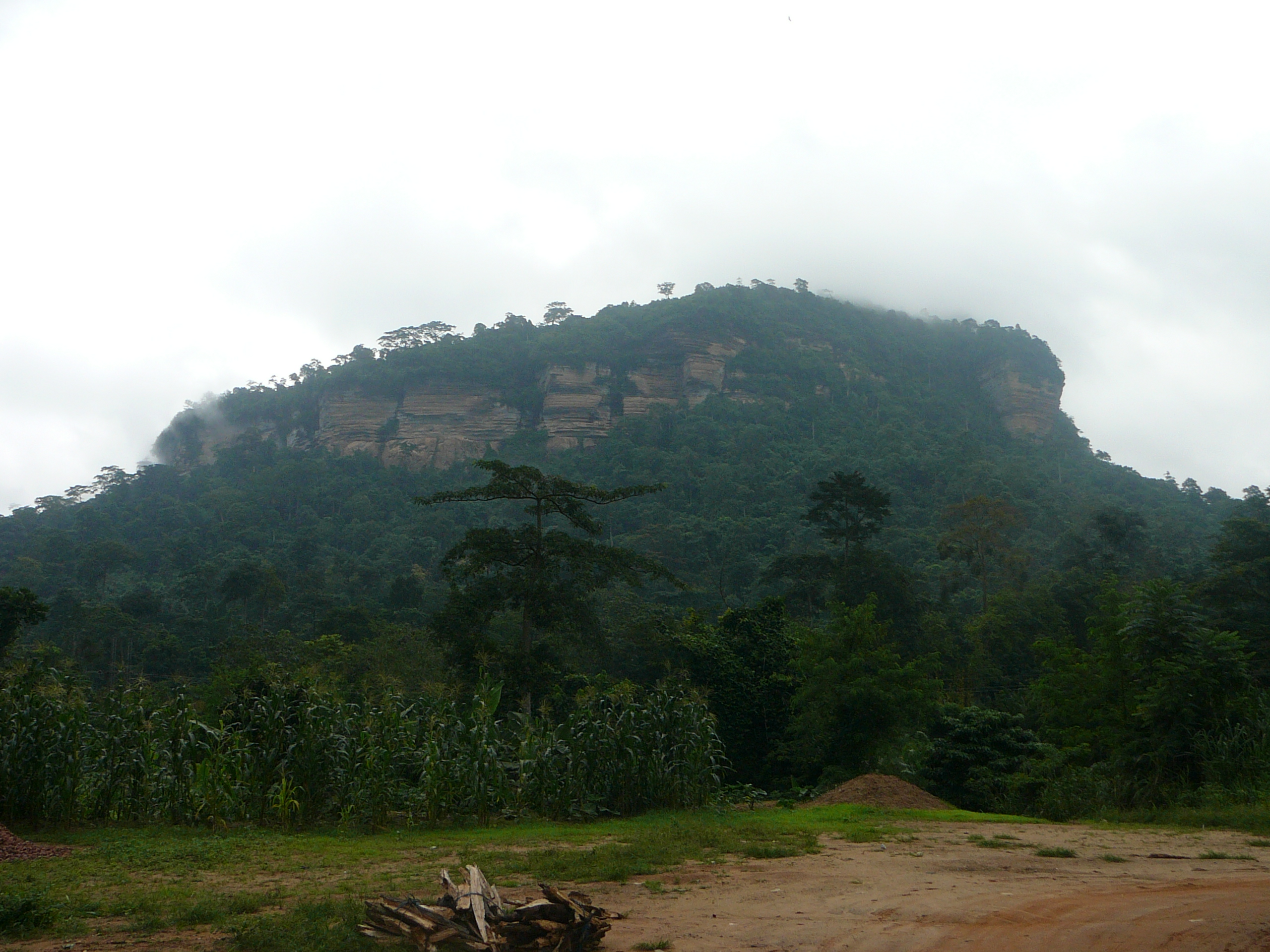 A mountain in Ghana, with clouds hanging low. The surroundings are filled with green trees